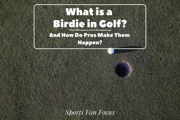 birdie-golf